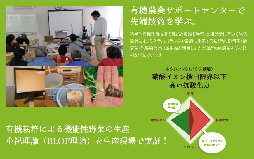 有機農業サポートセンターで先端技術を学ぶ。有機栽培による機能性野菜の生産小祝理論(BLOF理論)を生産現場で実証。